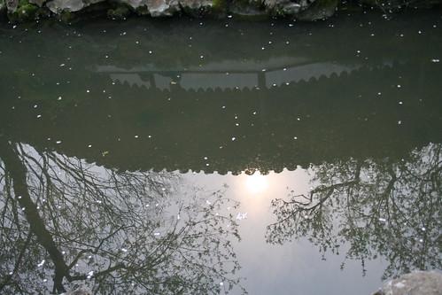 20090405蘇州拙政園與上海小南國晚餐