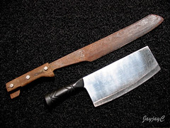 Machete and meat cleaver - our garden tools for this tough task of propagating Lady Palm