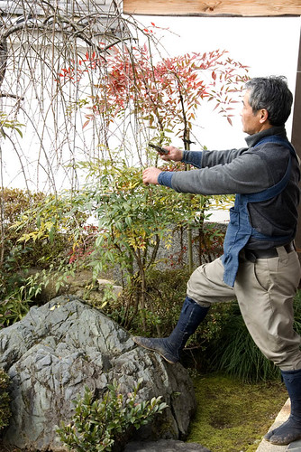 Mr. Hiraki - Master Garden designer