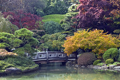 Japanese Garden in Fall at Brooklyn Botanic Garden, Brooklyn, New York (jackie weisberg) Tags: city nyc newyorkcity bridge autumn urban ny newyork fall brooklyn garden landscape japanese japanesegarden pond topiary fallcolors cities bridges fallfoliage photograph american serenity historical serene newyorkstate brooklynbotanicgarden ponds northeast nys thebigapple bestofautumn jackieweisberg bbgcalendar2012
