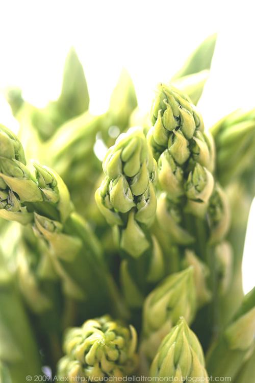 Asparagi verdi