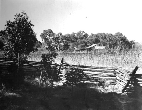 3585966496 844f9022c8 View of farm used as location for The Yearling motion picture