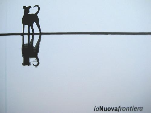 Lucía Puenzo, Il bambino pesce, la nuova frontiera 2009: grafica di copertina: Flavio Dionisi. Copertina (part.) 7
