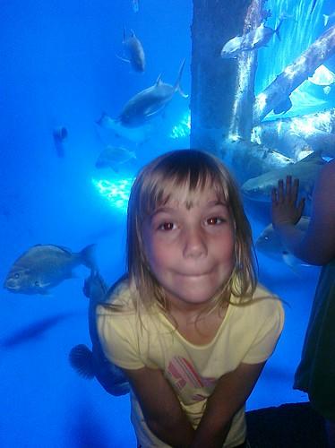 Texas State Aquarium in Corpus Christi, TX