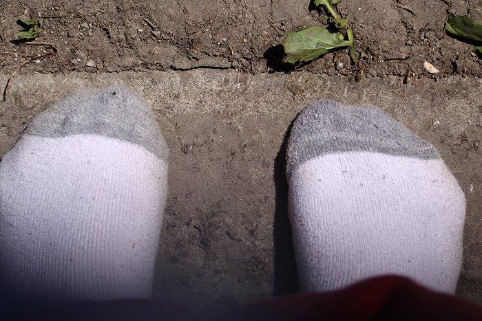 04-29-socks
