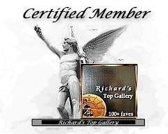 Richard's Top Gallery Member