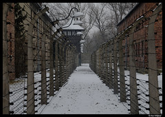 Frozen hell (Dan Wiklund) Tags: winter snow holocaust poland unesco barbedwire d200 auschwitz 2009 worldheritage concentrationcamp oswiecim electrifiedfence guardtower owicim auschwitzi exterminationcamp