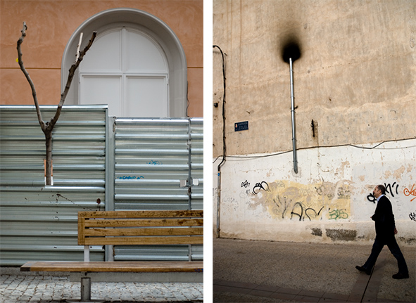 arboles urbanos