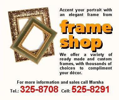 FLY SHEETS v2 - frame shop - feb 2009