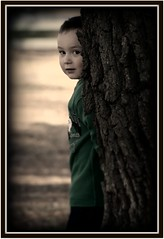 My Roman James ( dragonflyriri  (Limited Flickr Time)) Tags: light portrait playing tree cute love glow sweet roman son mybaby desaturated 3yearsold playful vignette growingup img3996