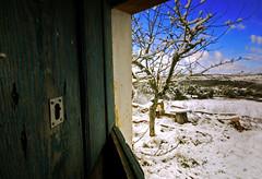 el refugio (carlos jm) Tags: door blue winter snow tree azul clouds composition arbol puerta nikon nieve cielo d200 frio cerradura colg