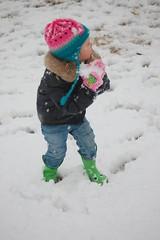 Snow 09 070