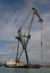 Leviathan crane
