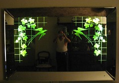 Etched Mirror by the Edgelyte Glass & Mirror Co.