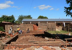 Construction Day 1 (robpei10) Tags: jacaranda