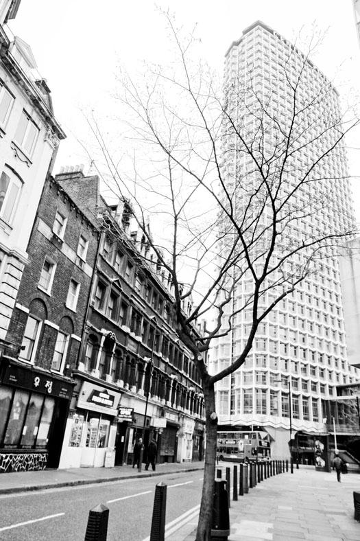 london003