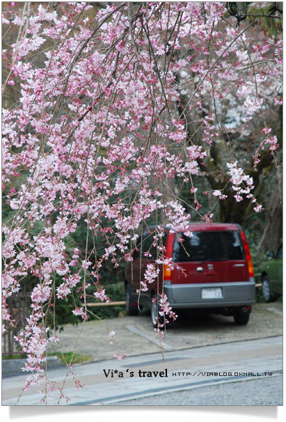 【京都春櫻旅】京都旅遊景點必訪~京都清水寺之美京都清水寺18
