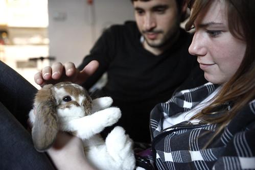 Bunny Time