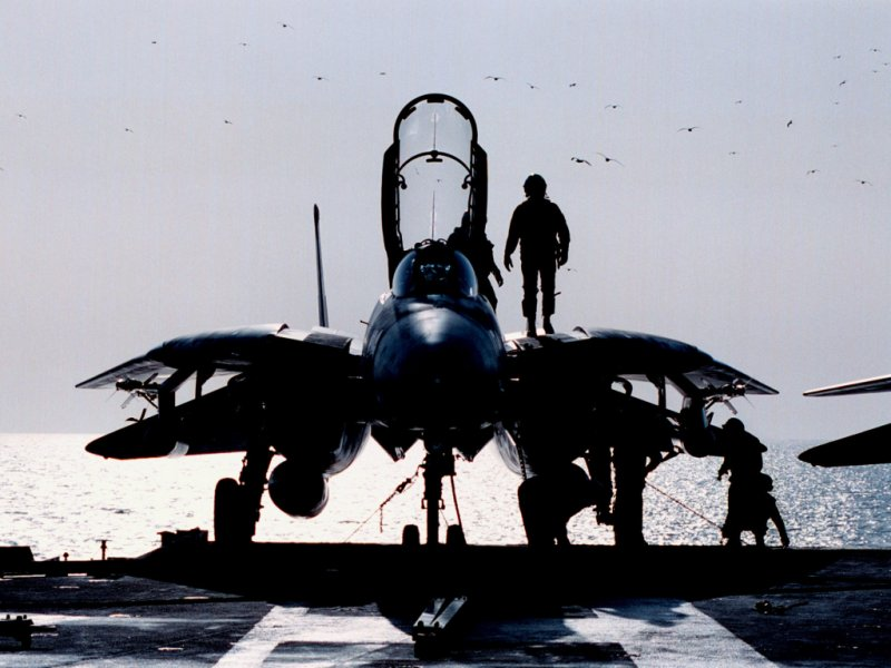 3543317505 63e5642829 o F 14 Tomcat (on aircraft carrier)