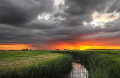 Within Sunset Serenity (Dani℮l) Tags: sunset holland netherlands dutch shower golden countryside zonsondergang farm daniel nederland pasture groningen thunder hdr weiland koe denham boerderij ezinge d300 platteland oneofthosemoments feerwerd middaghumsterland withinsunsetserenity