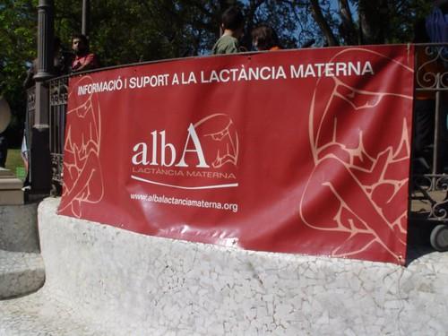 Cartel ALBA