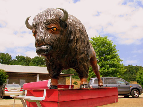 Loretta Lynn's fake bison