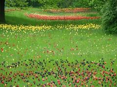 Britzer Garten 051