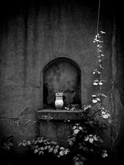 (gothicburg) Tags: bw green urn dark gteborg sweden decay niche gothenburg sverige secretgarden lightroom
