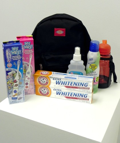Arm & Hammer Spin Brush Kids Camp Prize Pack
