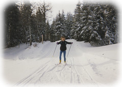 Retro cross country skiing