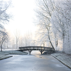 Winter (siebe ) Tags: winter cold holland dutch landscape cool scenery frost nederland thenetherlands landschap kou vorst hollandstock