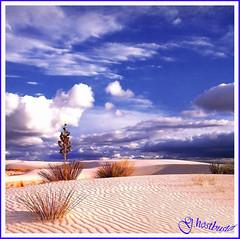 Desert scenario (G.hostbuster (Gigi)) Tags: pink blue sky clouds sand nuvole niceshot desert blu rosa cielo maroc marocco shrubs deserto amazingcolors sabbia naturesfinest blueribbonwinner arbusti fineartphotos worldbest colorphotoaward infinestyle ysplix theunforgettablepictures theunforgettablepicture proudshopper goldstaraward natureselegantshots rubyphotographer magicdonkeysbest vosplusbellesphotos paololivornosfriends mallmixstaraward finephotoshopdesign flickrsmasterpieces internationalflickrawards miasbest worldsartgallery