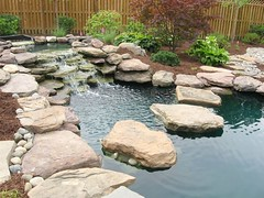 Water Features and Ponds | Masonry Division | Johnsons Landscaping 8 (Johnsons Landscaping Service, Inc) Tags: park lighting county water stone stairs work silver landscape outdoors design dc washington spring md nw exterior northwest gardening landscaping masonry johnson scenic fences plan maryland chevy chase potomac service walkways features montgomery walls kensington takoma decks bethesda ponds silverspring stonewalls takomapark driveways carpentry rockville retaining drainage paver chevychase olney arbors patios plantings trellises retainingwalls exteriorlighting landscapelighting segmental johnsonslandscapingservice incresidentialandcommerciallandscapedesignservicesinwashington montgomerycountyotherservicesgardendesign yarddesigns stepsandwalkways timberwallspatiosstepsandwalkwayspondsgardendesignstonewallsexteriorlightingpruningandtrimmingpaversflagstonewalkwayflagstonepatiodrainageretainingwallsyarddesignslandscapingservicejohnsonlandscapinglandscapedesign