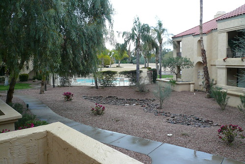 Rainy Scottsdale