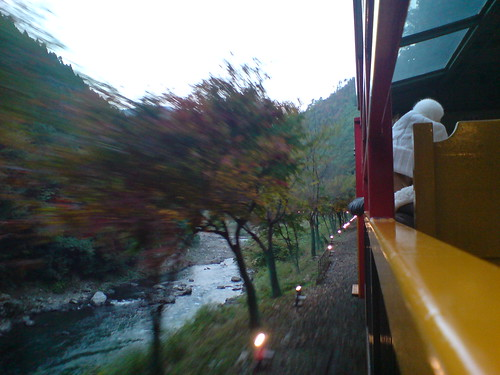 你拍攝的 觀光小火車。