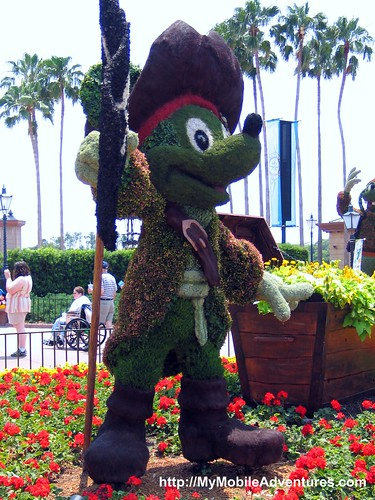 IMG_4270-Pirate-Mickey-Mouse-topiary
