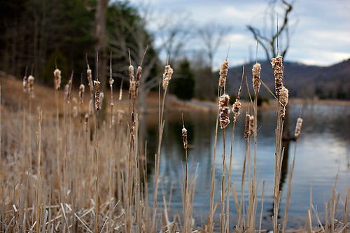 South Mill Creek Lake