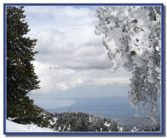 winter (Polis Poliviou) Tags: morning blue trees winter sky white mountain snow cold tree nature beautiful weather pine clouds forest canon wonderful landscape eos frozen photo flickr frost skiing cyprus pines snowboard february olympos snowglobe polis troodos nicosia naturesfinest supershot specland excellentscenic mediterraneanpines mediterraneanpine poliviou polispoliviou cypruspine troodospine