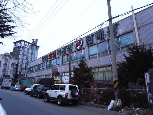 대전 꽃 화훼 판매장