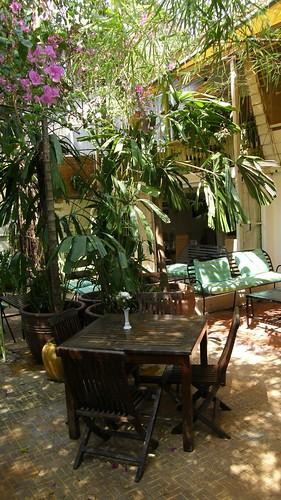 052.Boddhi Tree悠閒的座位