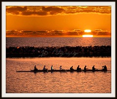Team Sunset (GlossyEye.) Tags: sunset lake inspiration water sport photography interestingness team nikon flickr explore rowing teamwork rowers tup naturesfinest blueribbonwinner  supershot flickrsbest theworldthroughmyeyes twtme bej passionphotography golddragon mywinners abigfave platinumphoto nikond40 anawesomeshot colorphotoaward diamondclassphotographer flickrdiamond citrit theunforgetablepictures theunforgettablepictures platinumheartaward betterthangood theperfectphotographer spiritofphotography