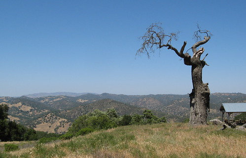 Vista from Dowdy Ranch