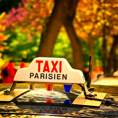You Should See Paris In Springtime (Allard One) Tags: flowers paris france tourism french spring nikon bokeh eiffeltower vivid sunny explore frankrijk lente 2009 parijs springtime francais kleurrijk blooming zonnig i500 d80 nikkor1755mmf28 nikcolorefexpro cityimpression taxiparisien nikond80 1000x1000 vierkantje allardone allard1 rooftopreflections brillianceandwarmth allardschagercom