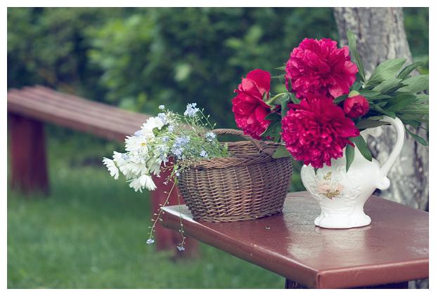 In the Garden...