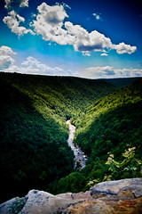 overlook (shane holsclaw) Tags: canyon wv westvirginia blackwater canaanvalley blackwatercanyon canaanvalleywv