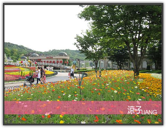 愛寶樂園15