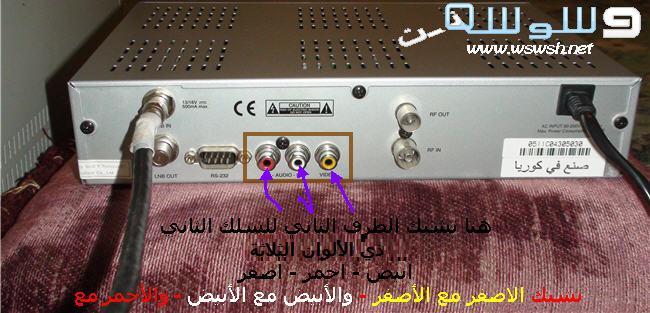 شرح طريقة التسجيل من التلفاز عن طريق كرت فيديو داخلي Msi  4574260576_f4077bde2a_o
