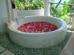 Flower Bath (komandrew) Tags: ocean trip travel flowers sunset vacation bali house holiday building beach home water architecture buildings relax geotagged island asia paradise honeymoon contemporary resort villa stunning tropical tropicalisland romantic relaxation relaxed spa luxury opulent lovina pampered balinese luxurious opulence holidayhome vacationhome holidayvilla singaraja pampering pamper beachvilla luxuryvilla vacationvilla