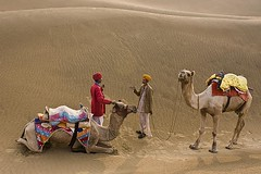 Chat in Desert (Tilak Haria) Tags: india chat desert camel jaisalmer rajasthan khuri pratibimbsangli savebeautifulearth