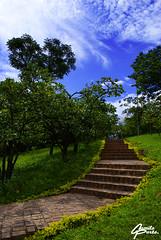 Escadaria para o céu! (Camilo Porto) Tags: sky flores verde branco azul céu lagos sp nuvens paulo são lirios gramado parques praças maxro